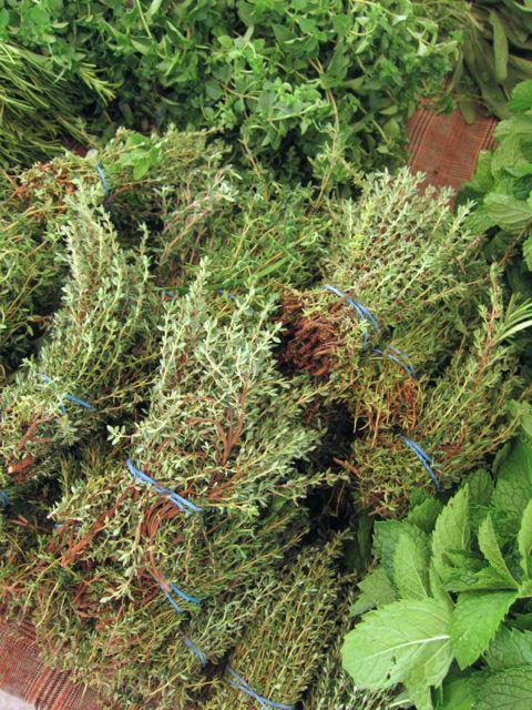 bundles of thyme