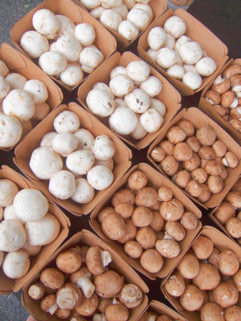 mushrooms at the farmers market