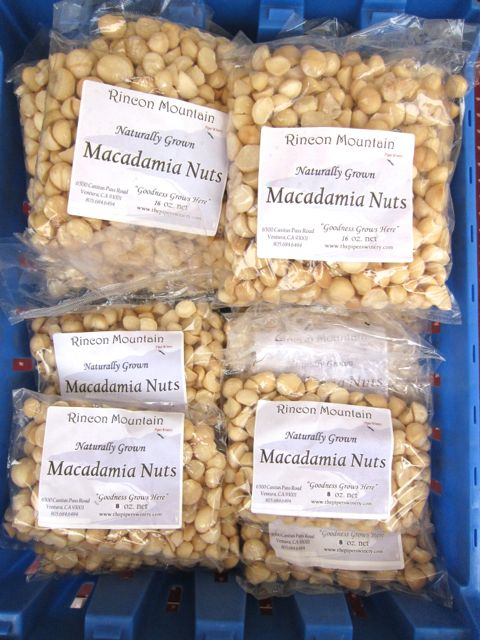 macadamia nuts at farmers market